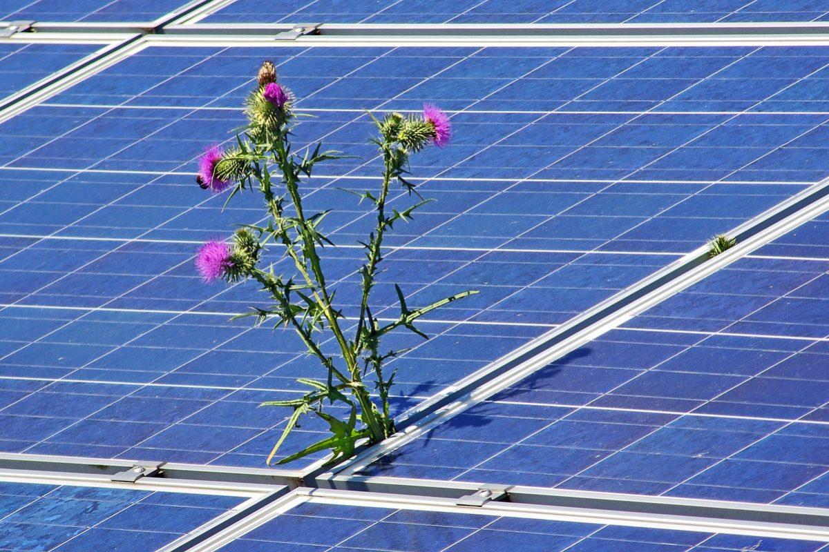 photovoltaic-4244774_1280